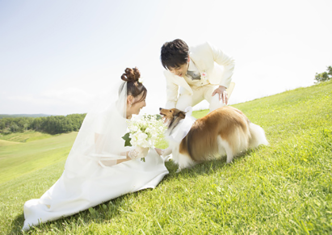 Dog and bridal couple